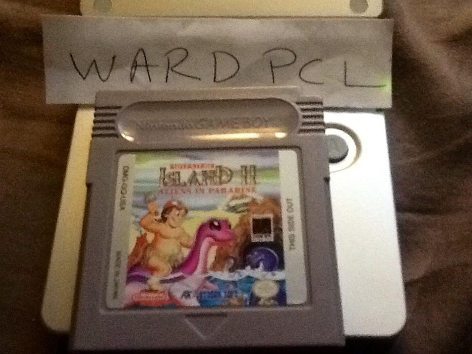 Wardpcl: Adventure Island II (Game Boy) 42,800 points on 2015-07-03 16:55:05
