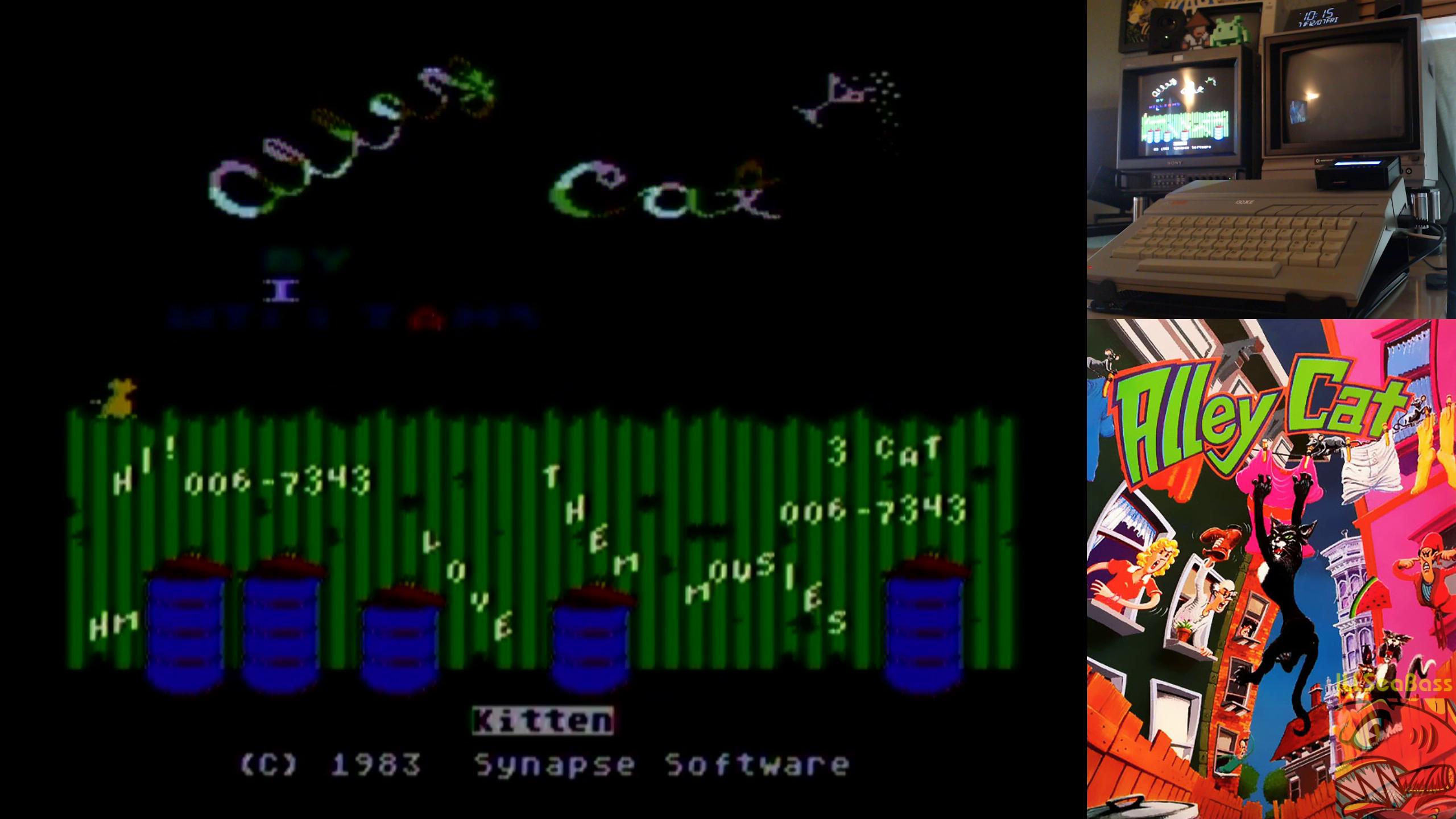 ILLSeaBass: Alley Cat (Atari 400/800/XL/XE) 67,343 points on 2018-12-13 11:51:48