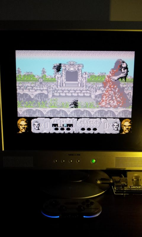 Larquey: Altered Beast (Commodore 64 Emulated) 11,600 points on 2017-03-05 04:05:54