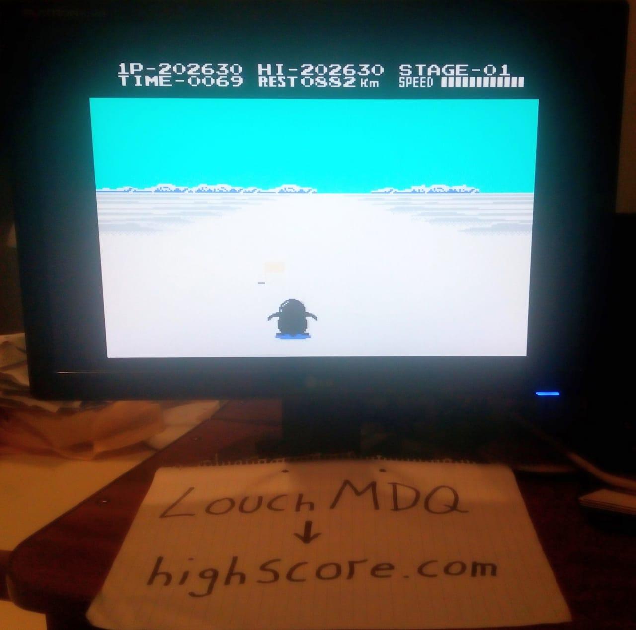 LouchMDQ: Antarctic Adventure: Level 2 Start (NES/Famicom Emulated) 202,630 points on 2020-06-22 03:59:18