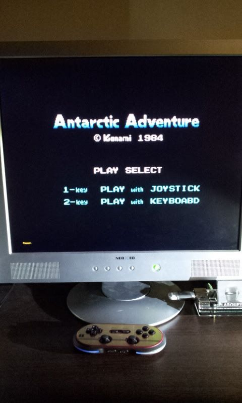 Larquey: Antartic Adventure (MSX Emulated) 15,460 points on 2017-01-25 13:17:20