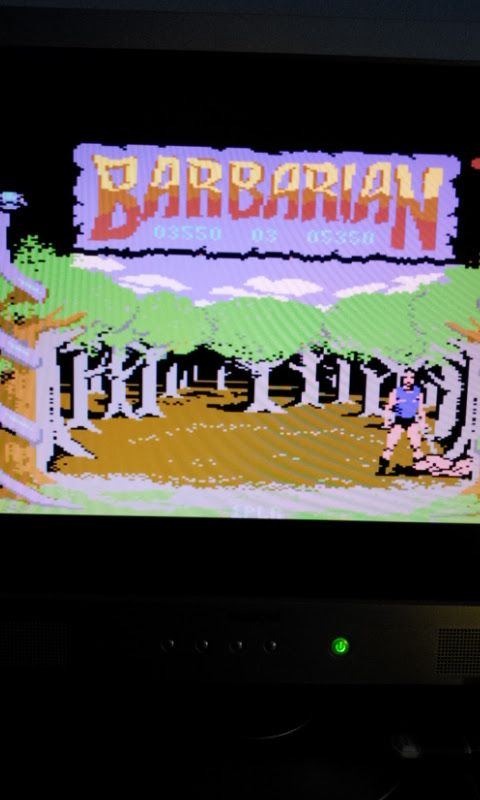 Larquey: Barbarian: The Ultimate Warrior (Commodore 64 Emulated) 3,550 points on 2017-03-19 05:38:29