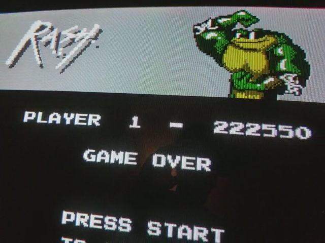 JES: Battletoads (NES/Famicom Emulated) 222,550 points on 2017-11-20 04:29:27