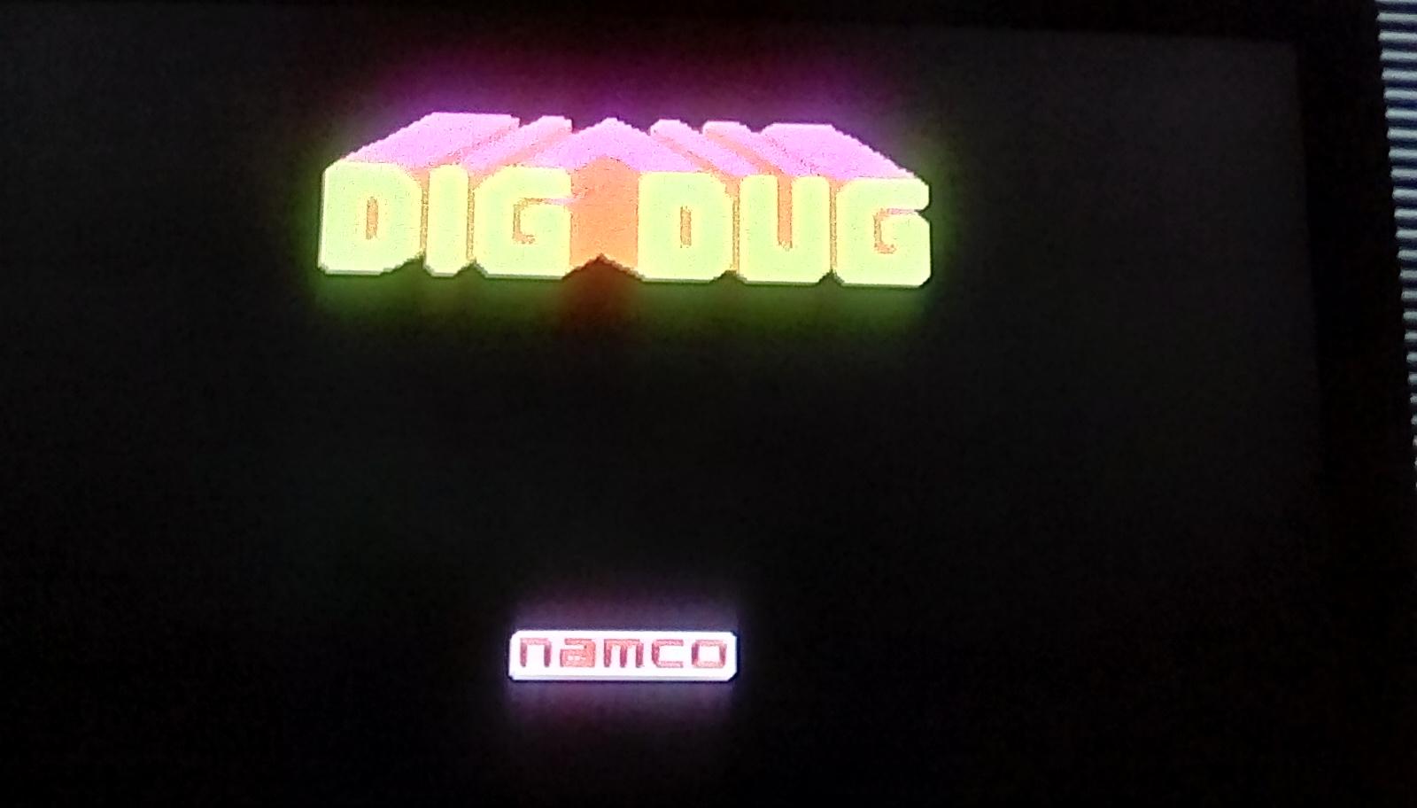 Dig Dug 690 points