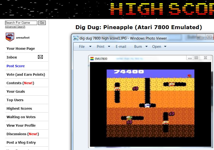 arenafoot: Dig Dug: Pineapple (Atari 7800 Emulated) 74,400 points on 2016-02-23 15:20:55