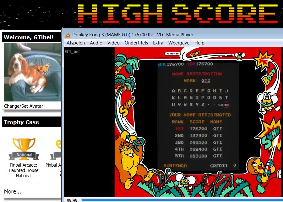 Donkey Kong 3 176,700 points