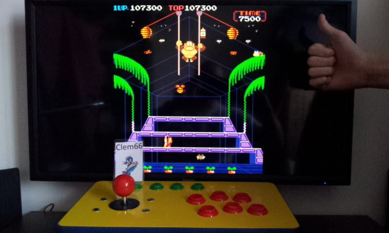 Donkey Kong 3 107,300 points