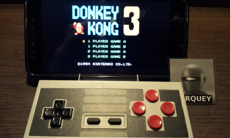 Donkey Kong 3: Game A 73,400 points