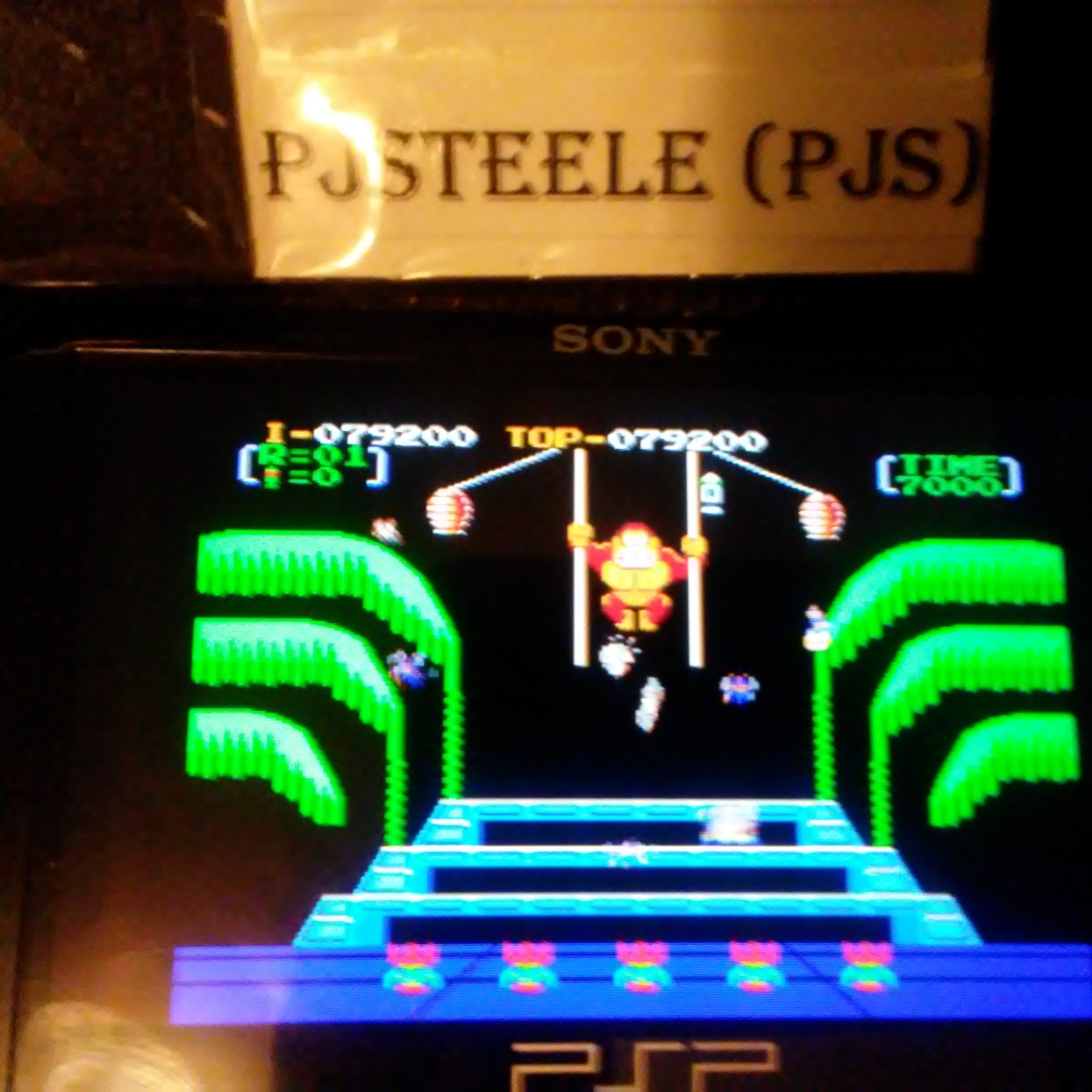 Donkey Kong 3: Game A 79,200 points