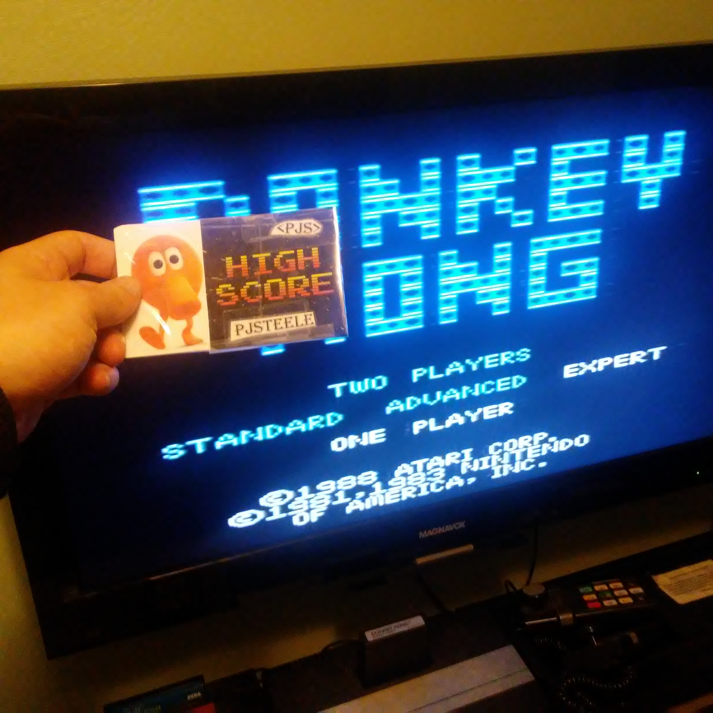 Donkey Kong: Expert 76,700 points