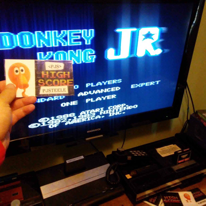 Pjsteele: Donkey Kong Jr: Advanced (Atari 7800) 99,300 points on 2018-02-11 19:02:24