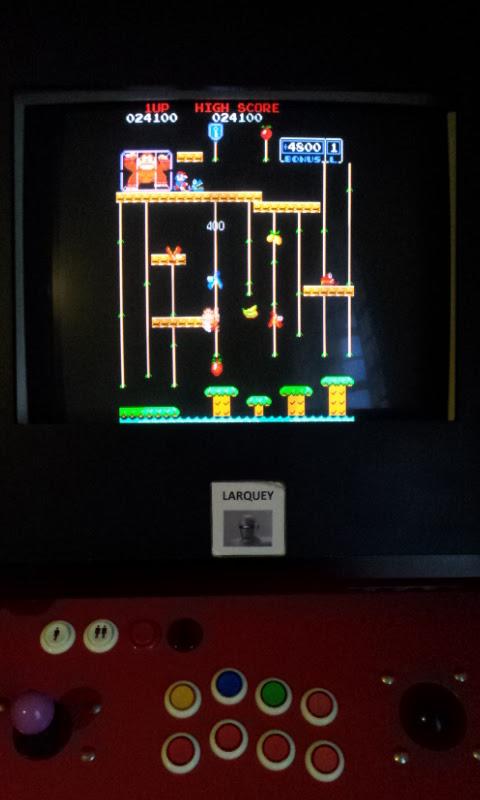Donkey Kong Jr 24,100 points