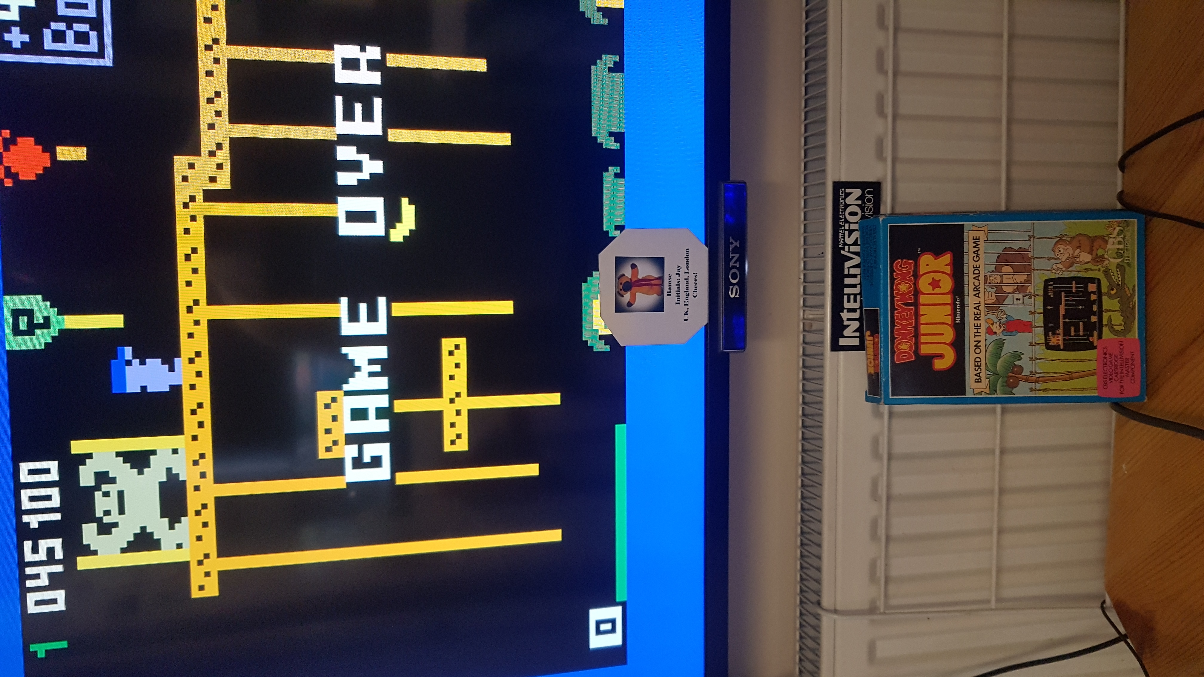 Bamse: Donkey Kong Jr. [Level 1] (Intellivision) 45,100 points on 2019-06-02 10:50:47