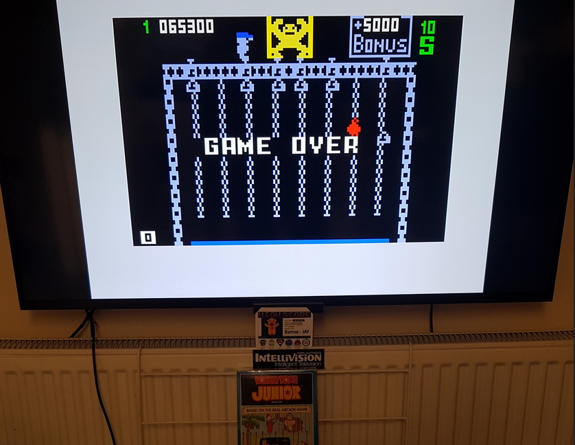 Bamse: Donkey Kong Jr. [Level 1] (Intellivision) 65,300 points on 2019-11-21 17:30:42
