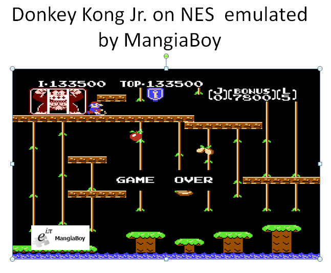 Donkey Kong Jr 133,500 points