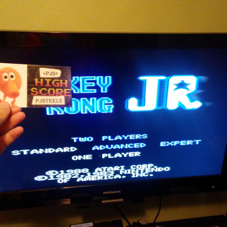 Donkey Kong Jr: Standard 154,800 points