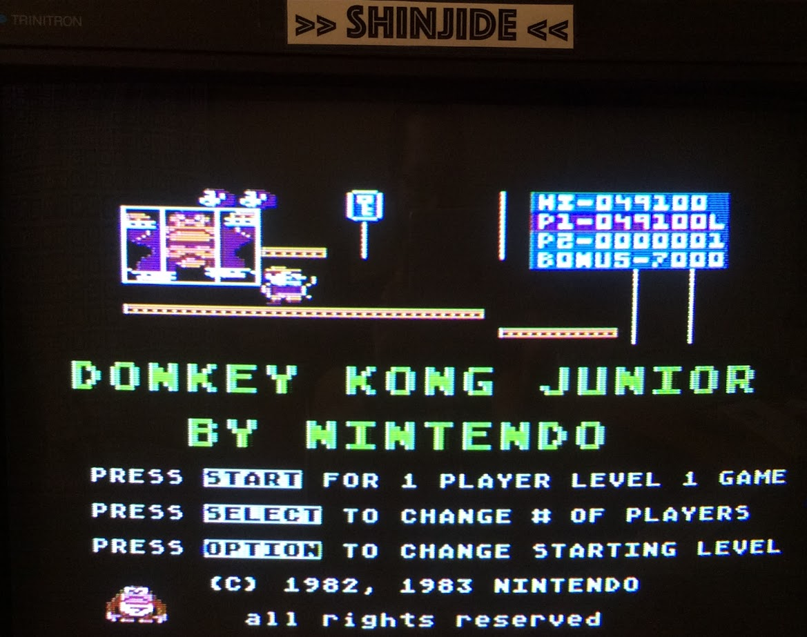 Donkey Kong Junior 49,100 points