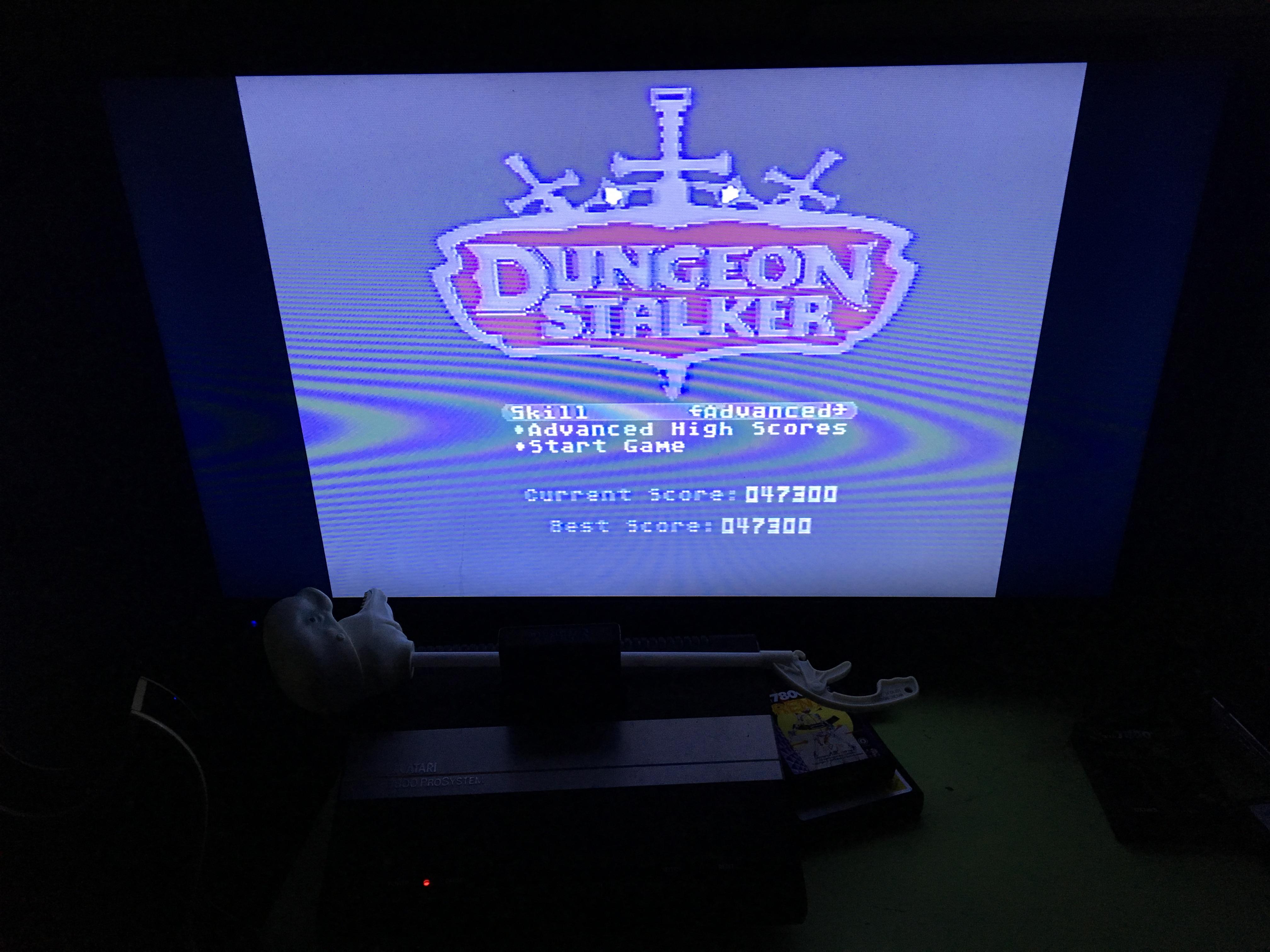 Dungeon Stalker [Advanced] 47,300 points