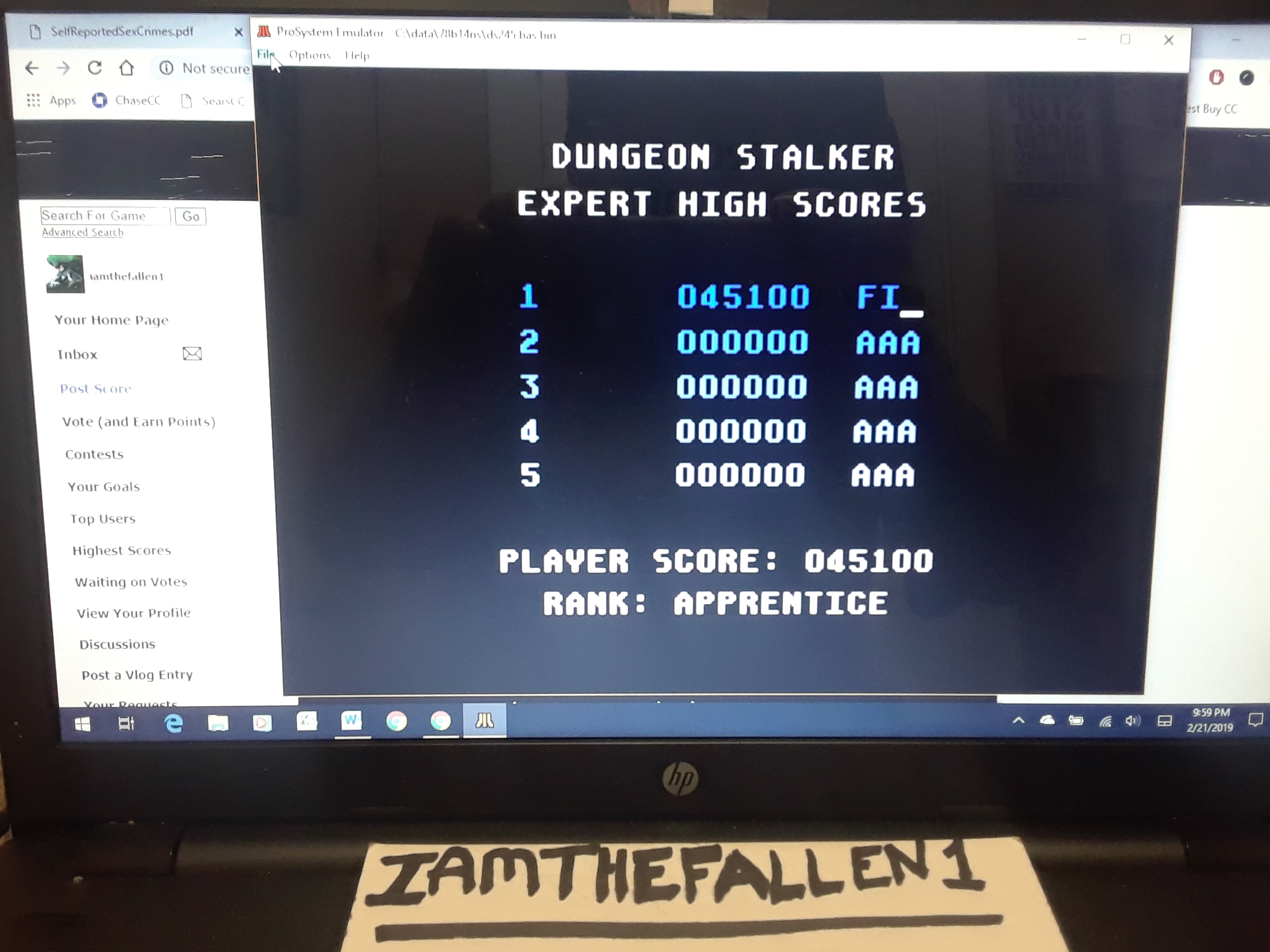 iamthefallen1: Dungeon Stalker [Expert] (Atari 7800 Emulated) 45,100 points on 2019-02-21 21:01:11