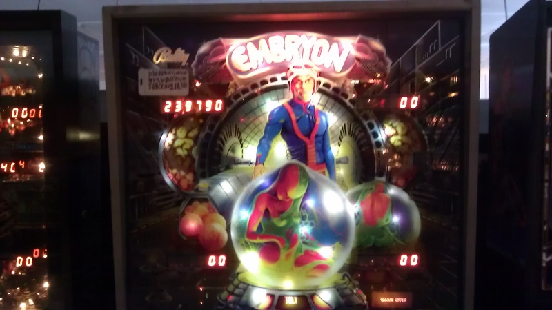 ichigokurosaki1991: Embryon (Pinball: 5 Balls) 239,790 points on 2016-04-08 10:01:44