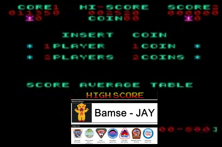 Bamse: Falcon [falcon] (Arcade Emulated / M.A.M.E.) 11,350 points on 2020-01-22 18:11:45