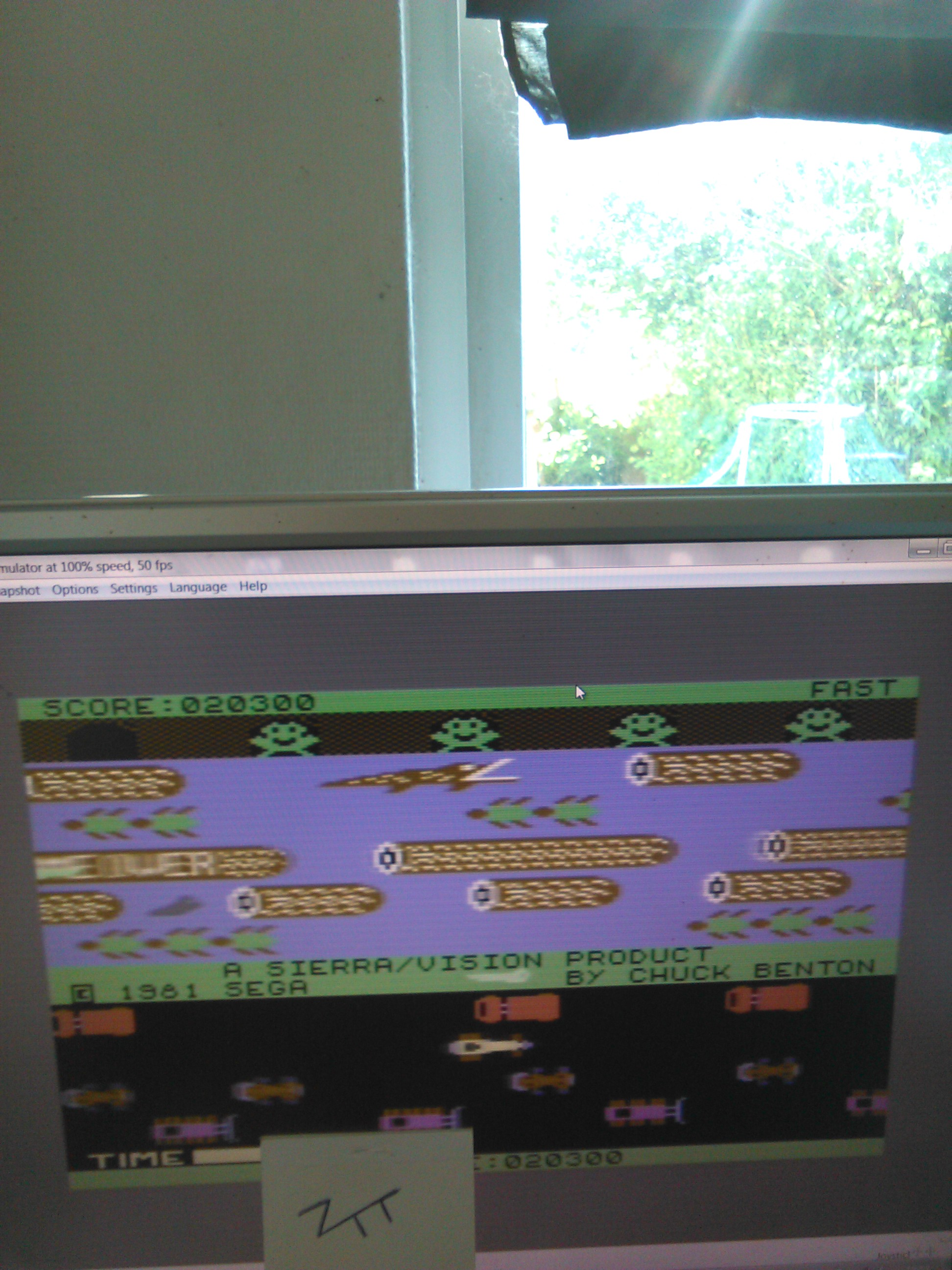Frogger: Sierra 20,300 points