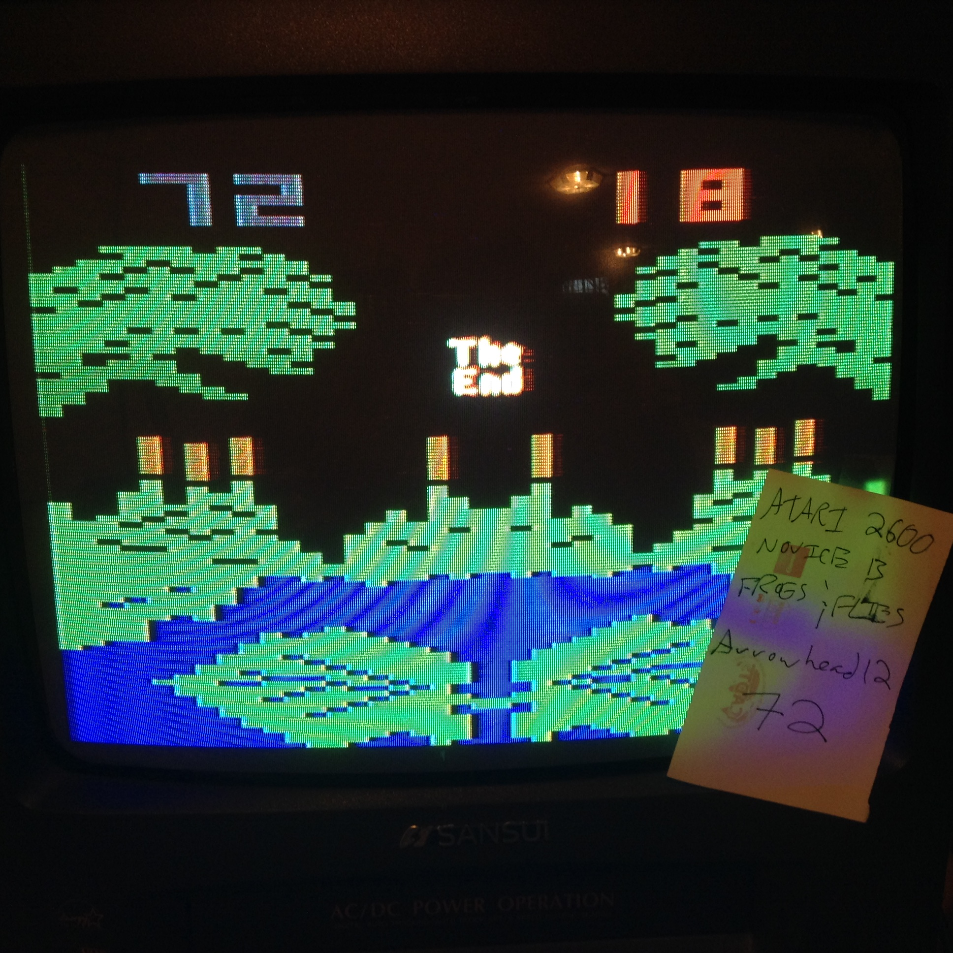 Arrowhead12: Frogs and Flies (Atari 2600 Novice/B) 72 points on 2018-11-04 17:22:59