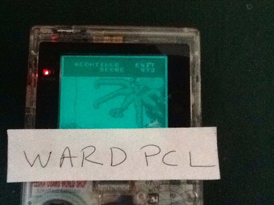 Wardpcl: Game & Watch Gallery: Octopus [Modern: Easy] (Game Boy) 973 points on 2015-07-04 08:23:58