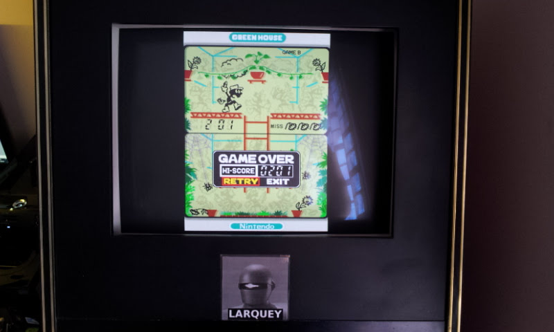 Larquey: Game & Watch Collection: Green House [Game B] (Nintendo DS Emulated) 201 points on 2018-05-05 12:02:30