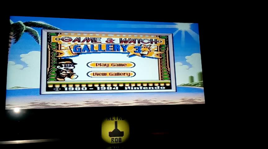 RetroRob: Game & Watch Gallery 3: Donkey Kong Jr: Classic: Easy (Game Boy Color) 601 points on 2020-02-05 14:10:16