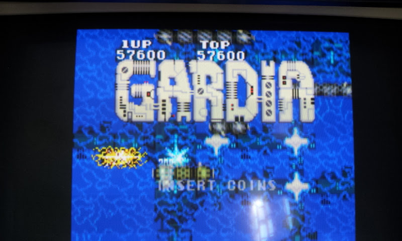 Larquey: Gardia [gardia] (Arcade Emulated / M.A.M.E.) 57,600 points on 2017-12-24 07:41:28