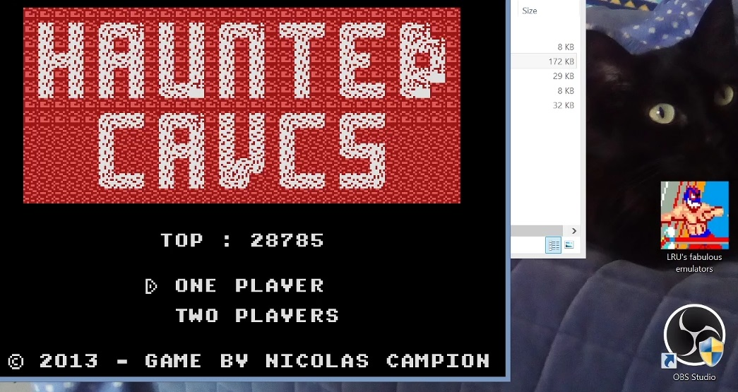 LuigiRuffolo: Haunted Caves (Colecovision Emulated) 28,785 points on 2020-12-25 03:54:37