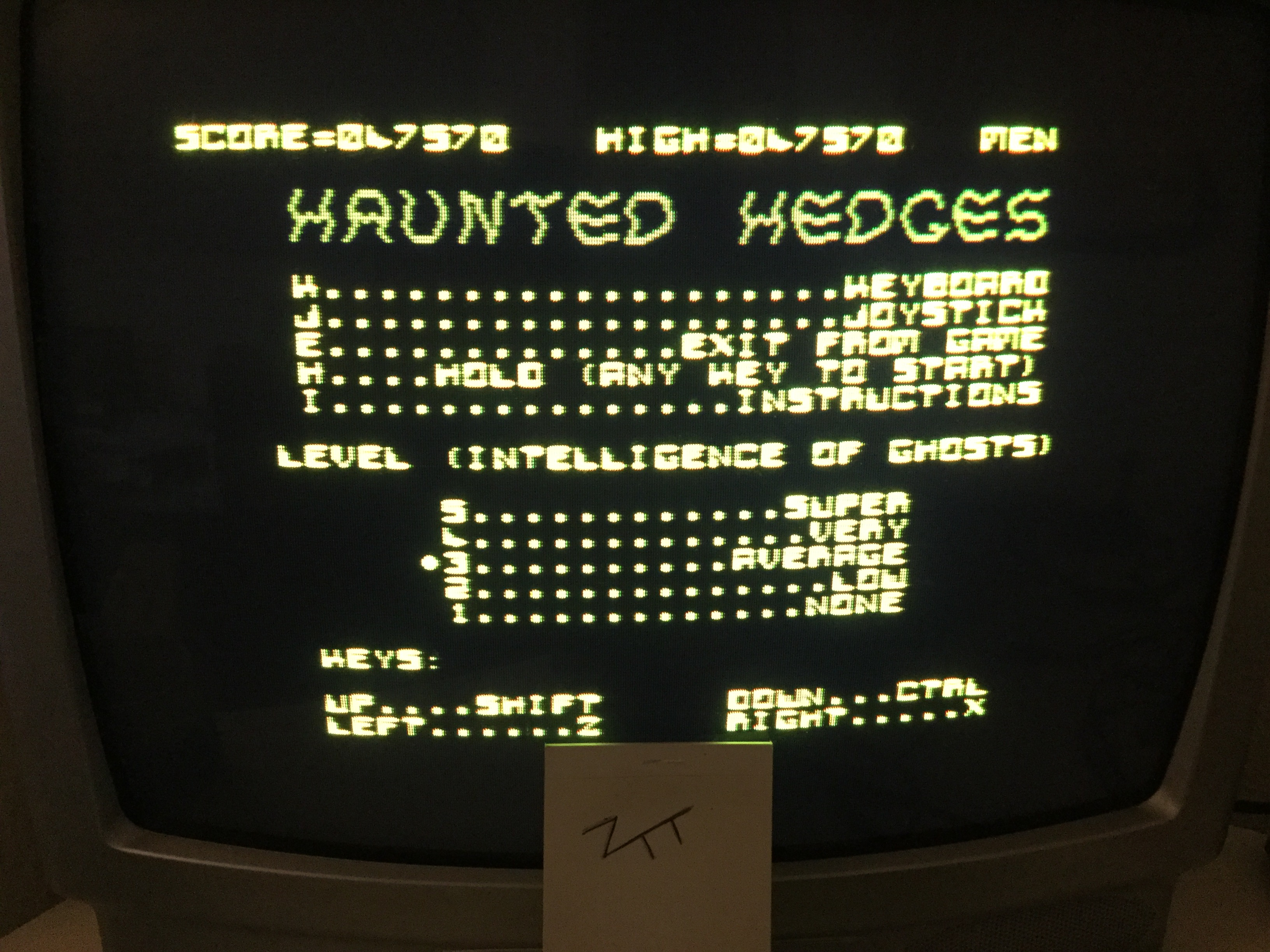 Frankie: Haunted Hedges [Average] (Amstrad CPC) 47,570 points on 2017-02-11 01:31:14