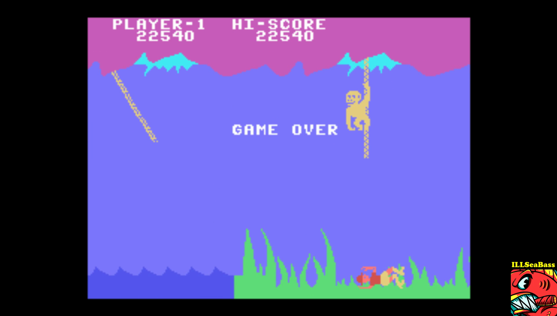 ILLSeaBass: Jungle Hunt: Skill 3 (Colecovision Emulated) 22,540 points on 2017-01-25 23:35:39