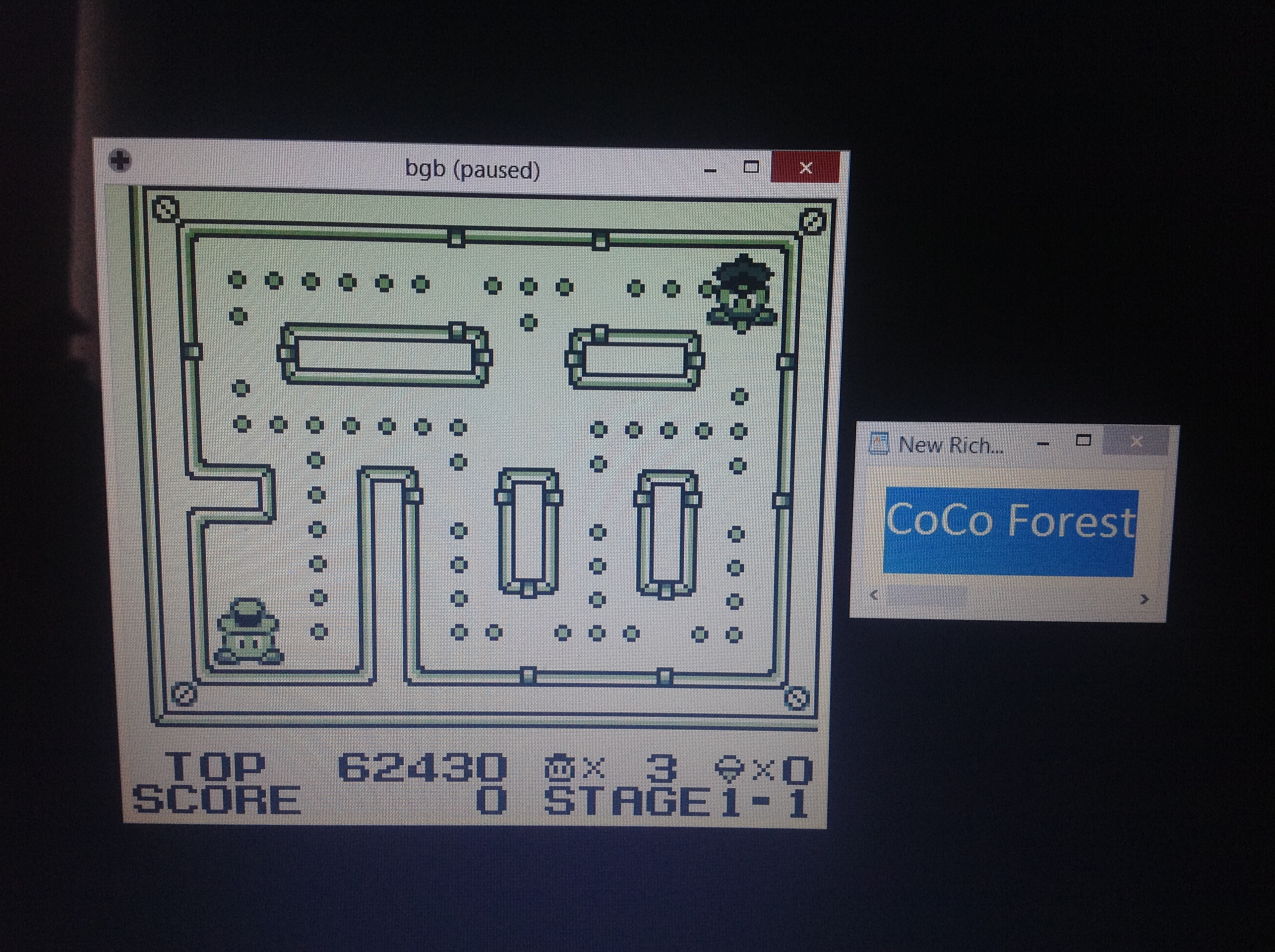 CoCoForest: Lock N Chase (Game Boy Emulated) 62,430 points on 2018-10-08 08:15:44