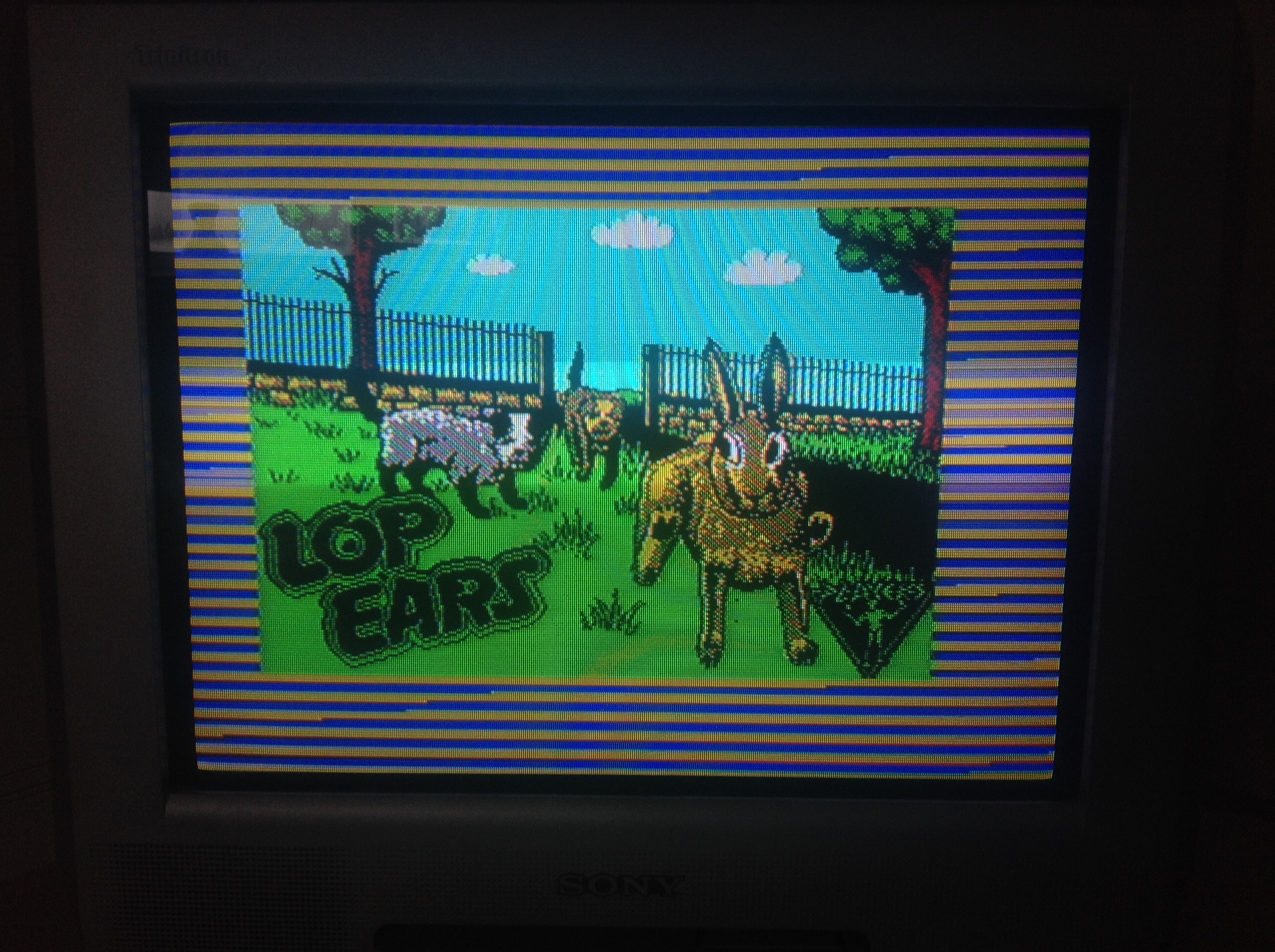 CoCoForest: Lop Ears (ZX Spectrum) 400 points on 2016-01-05 07:22:21