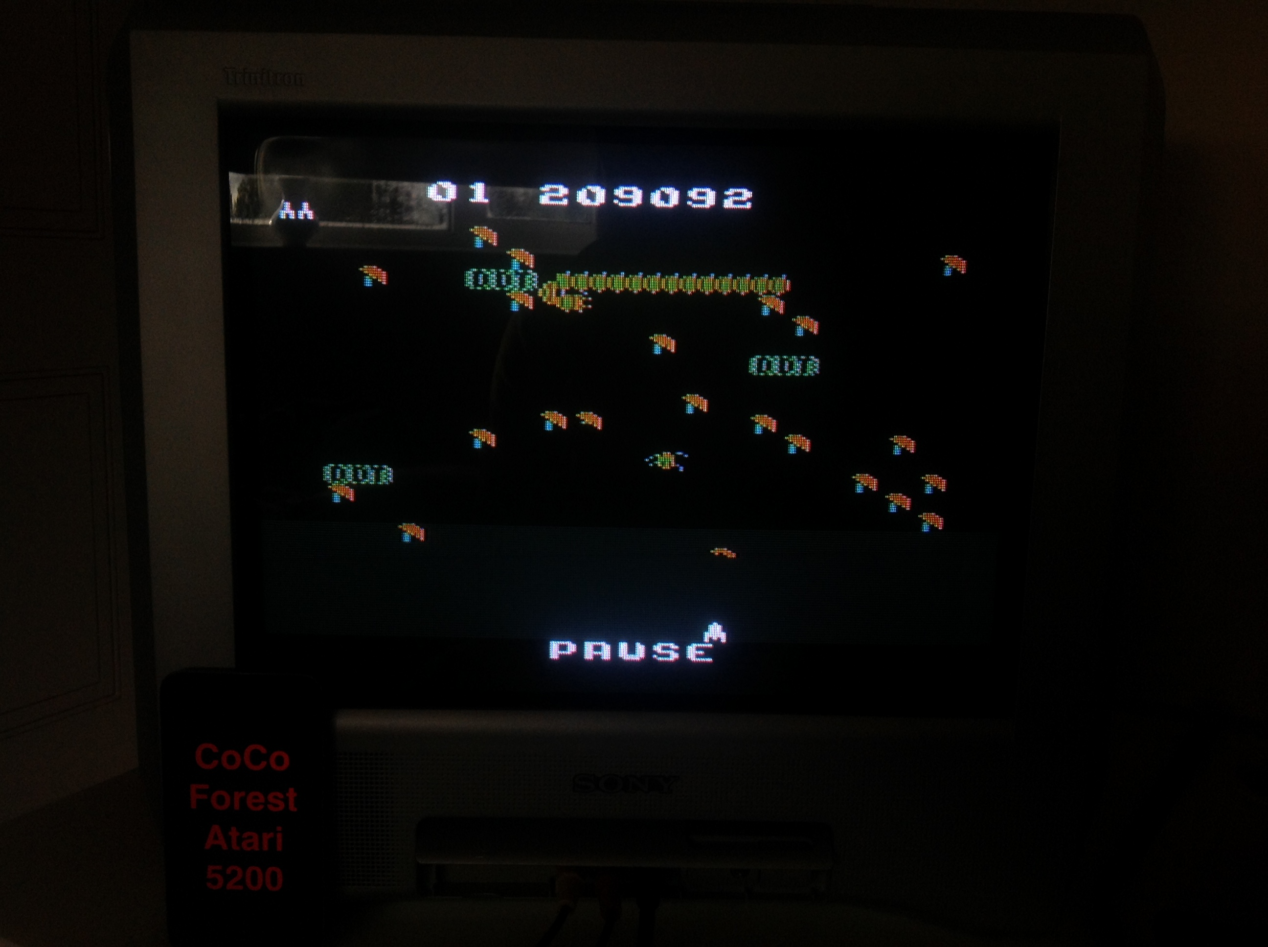 CoCoForest: Millipede (Atari 5200) 209,092 points on 2015-11-17 09:06:53
