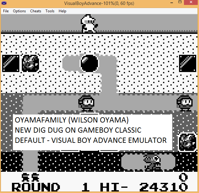 oyamafamily: New Dig Dug (Game Boy Emulated) 24,310 points on 2015-11-15 16:56:32