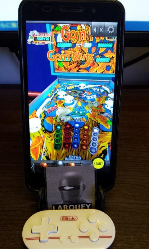 Larquey: Pinball Arcade: Goin