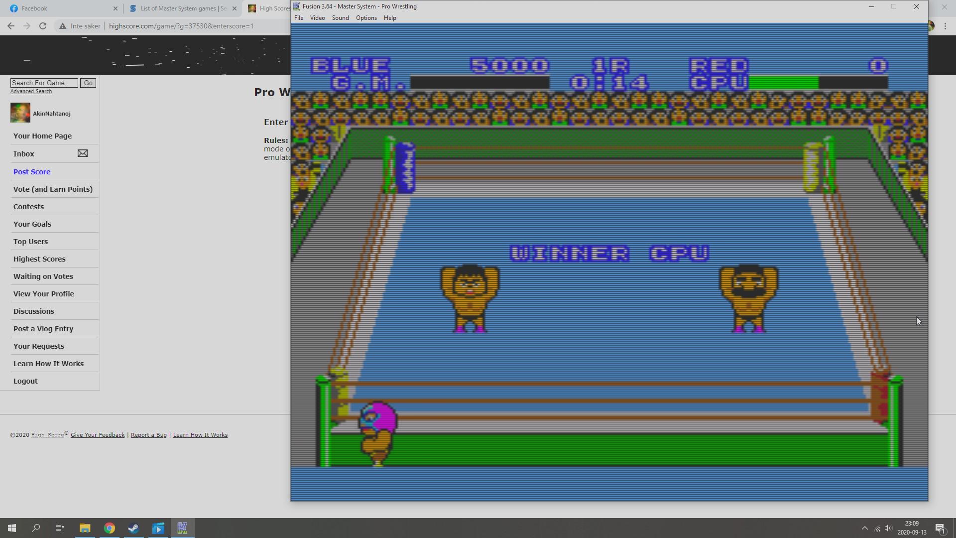 AkinNahtanoj: Pro Wrestling (Sega Master System Emulated) 5,000 points on 2020-09-13 16:26:05