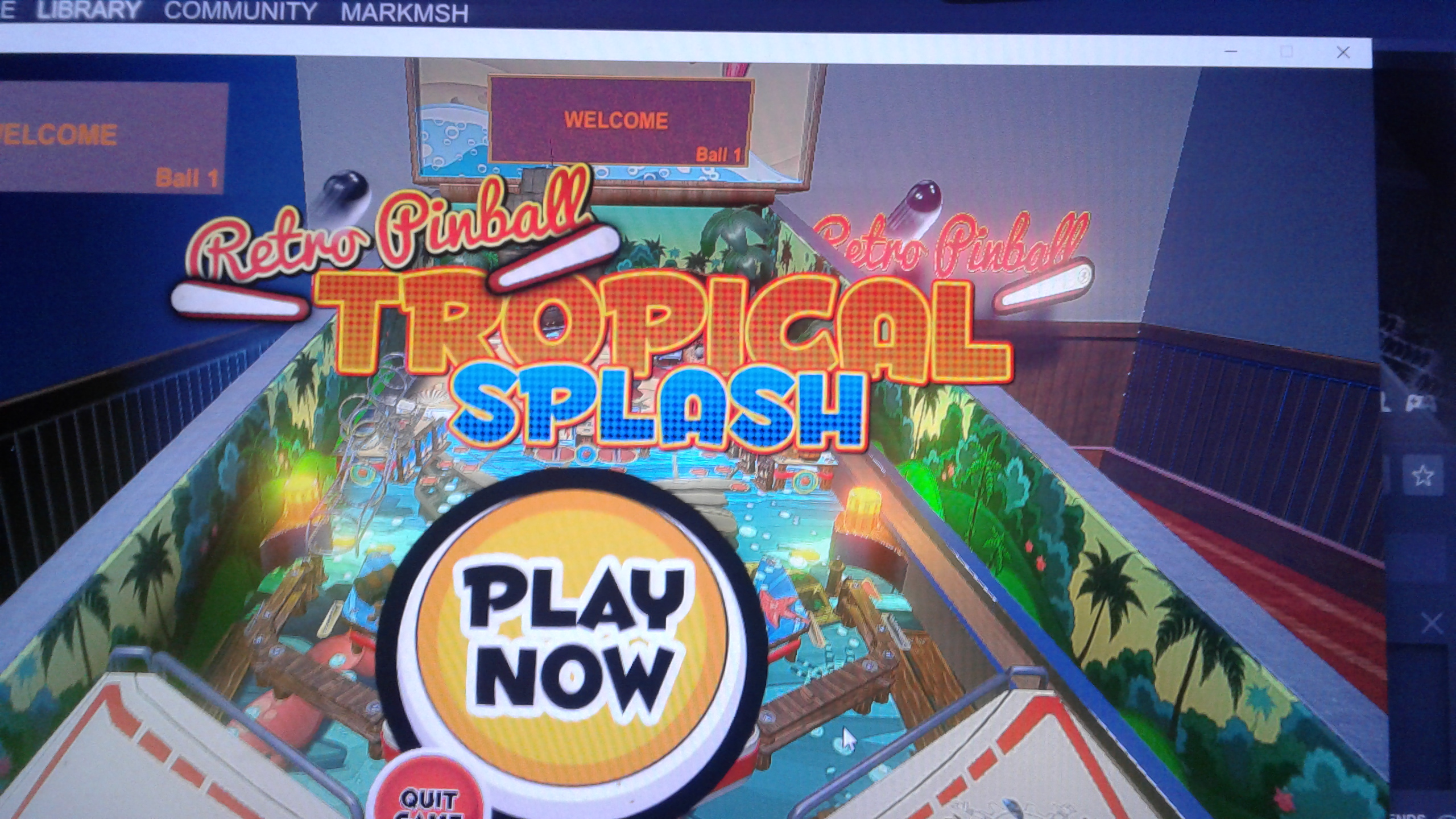 Mark: Retro Pinball: Tropical Splash (PC) 187,600 points on 2020-05-08 00:45:09