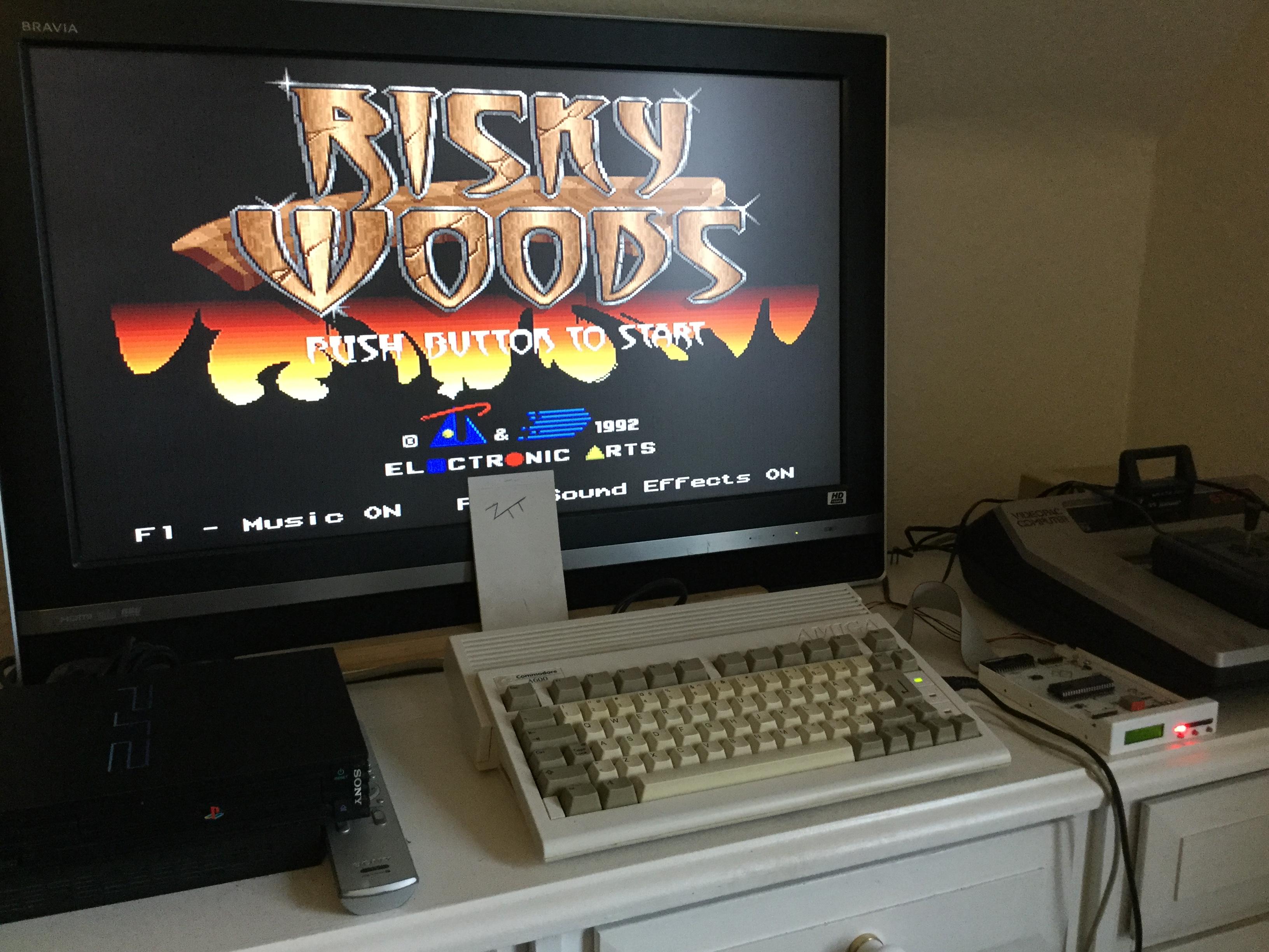 Frankie: Risky Woods [Electronic Arts] (Amiga) 114,584 points on 2017-10-22 06:32:54