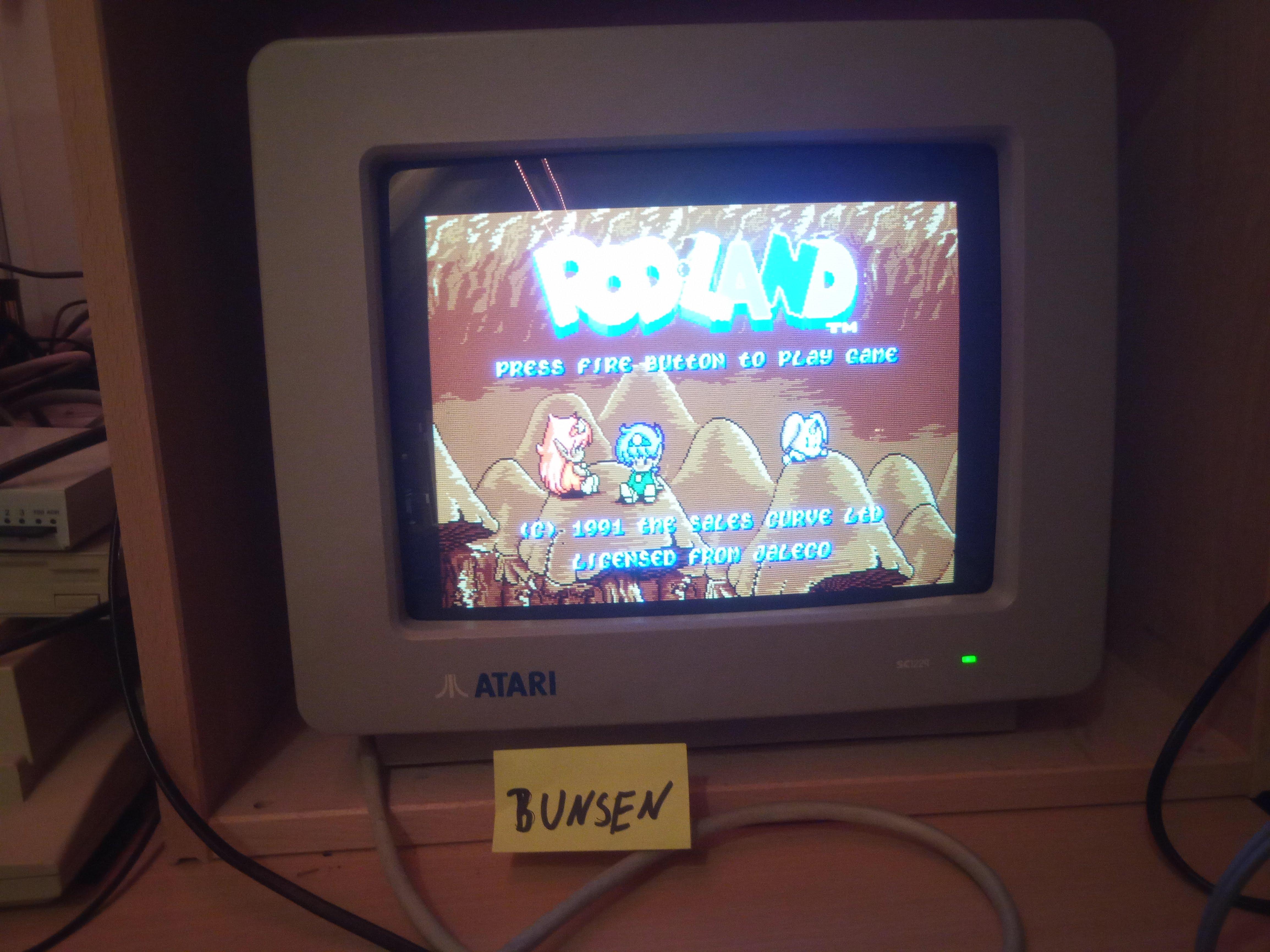 Bunsen: Rodland (Atari ST) 43,950 points on 2020-01-01 14:19:52