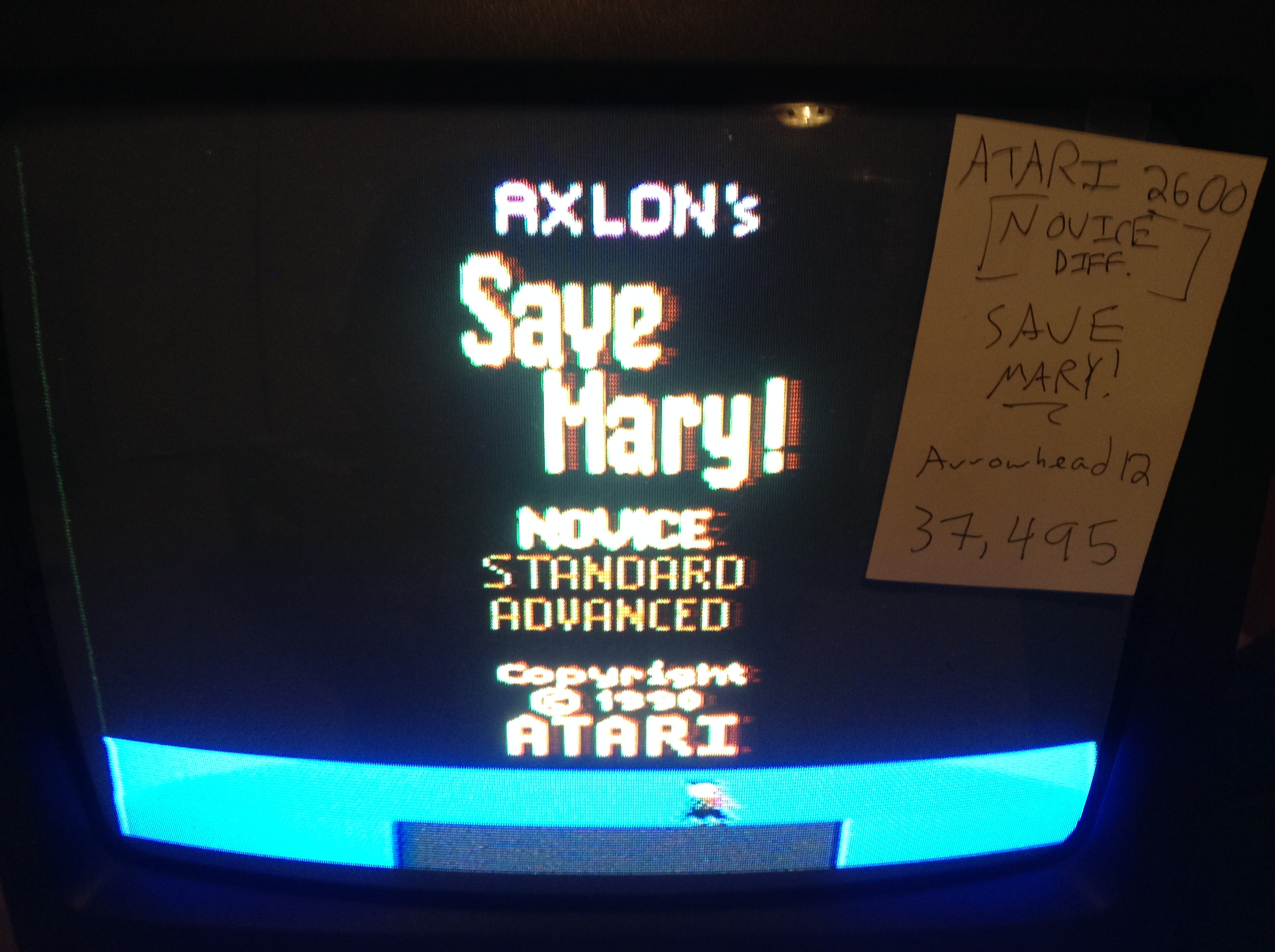 Save Mary [Novice] 37,495 points