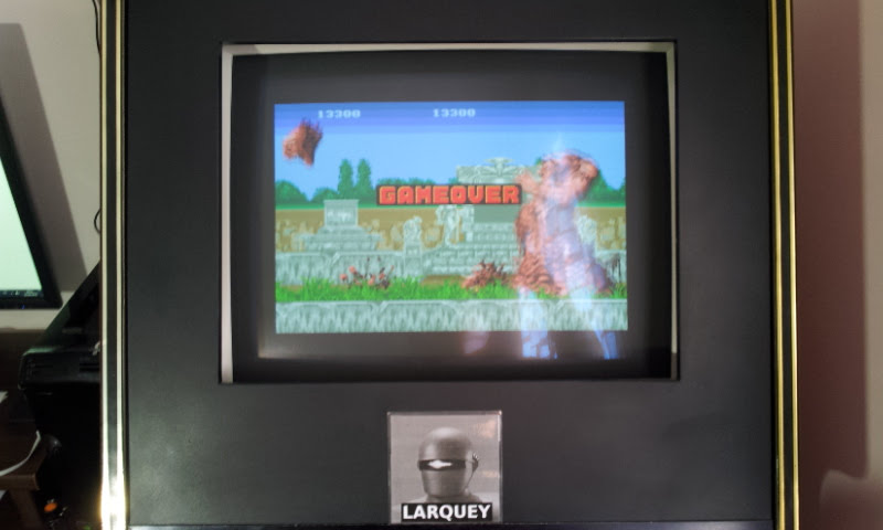 Larquey: Sega Genesis/Mega Drive Collection: Altered Beast (PSP Emulated) 13,300 points on 2018-04-10 13:49:06