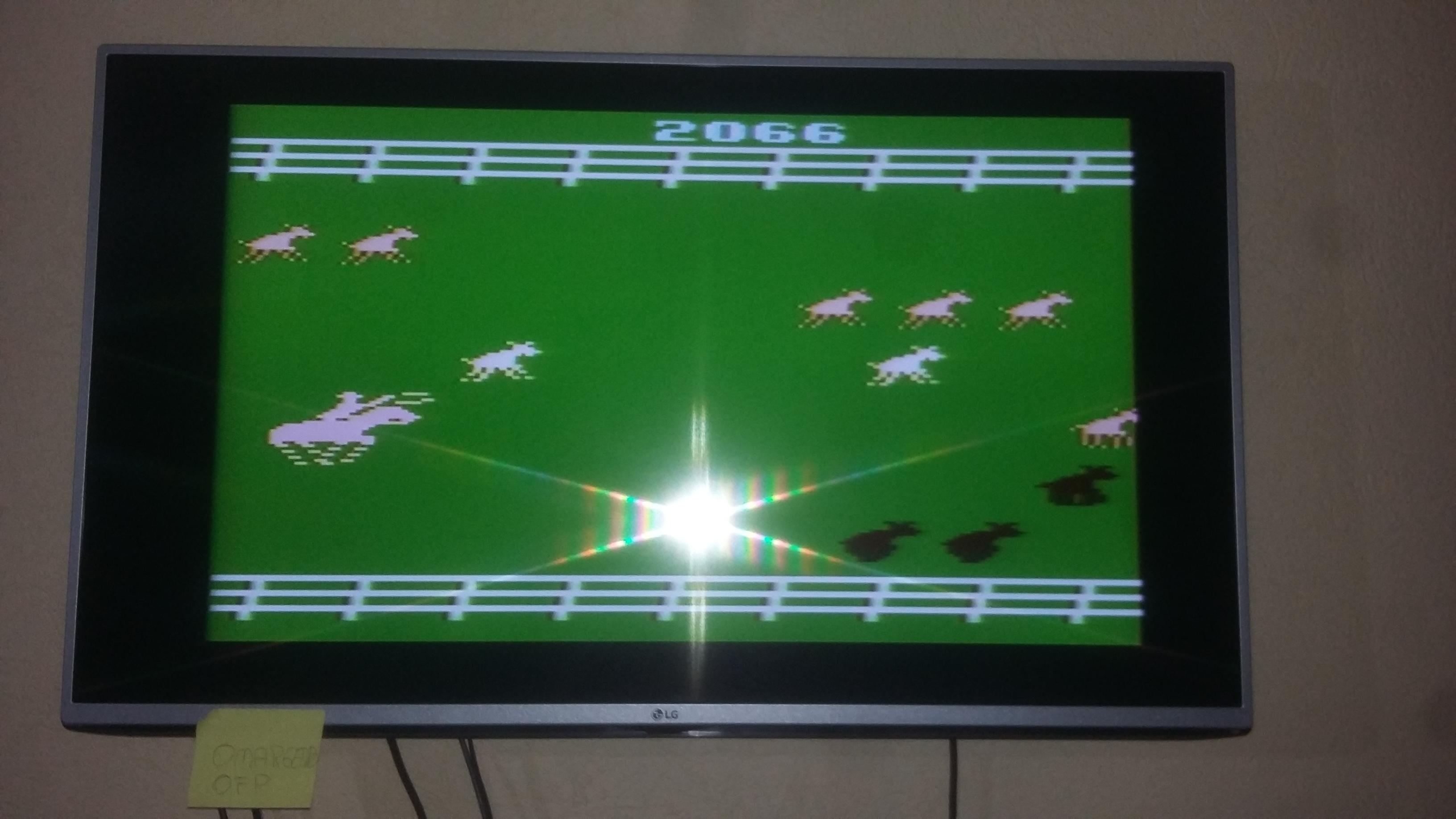 omargeddon: Stampede (Atari 2600 Novice/B) 2,066 points on 2016-10-29 12:50:00