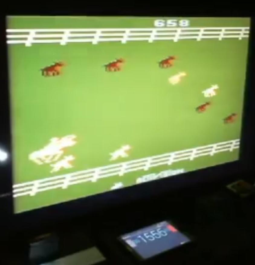 ZilchSr: Stampede: Game 5 (Atari 2600 Novice/B) 10,658 points on 2020-12-23 11:55:37