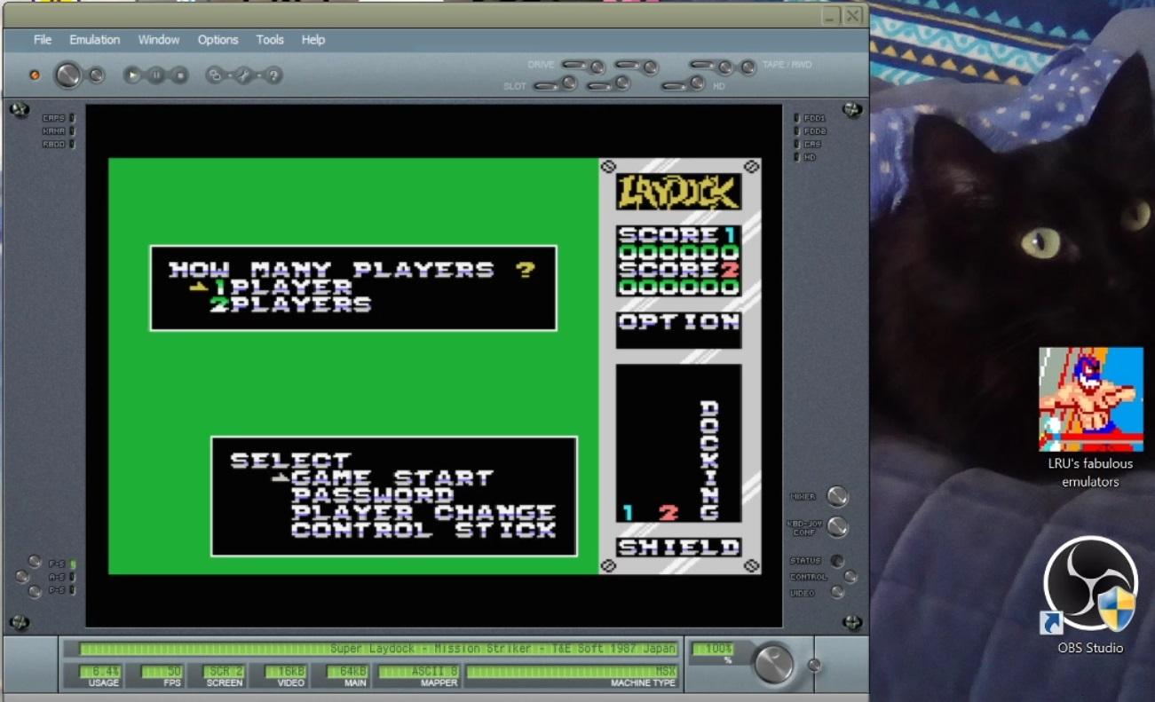 LuigiRuffolo: Super Laydock: Mission Striker (MSX Emulated) 13,650 points on 2021-01-02 11:18:05