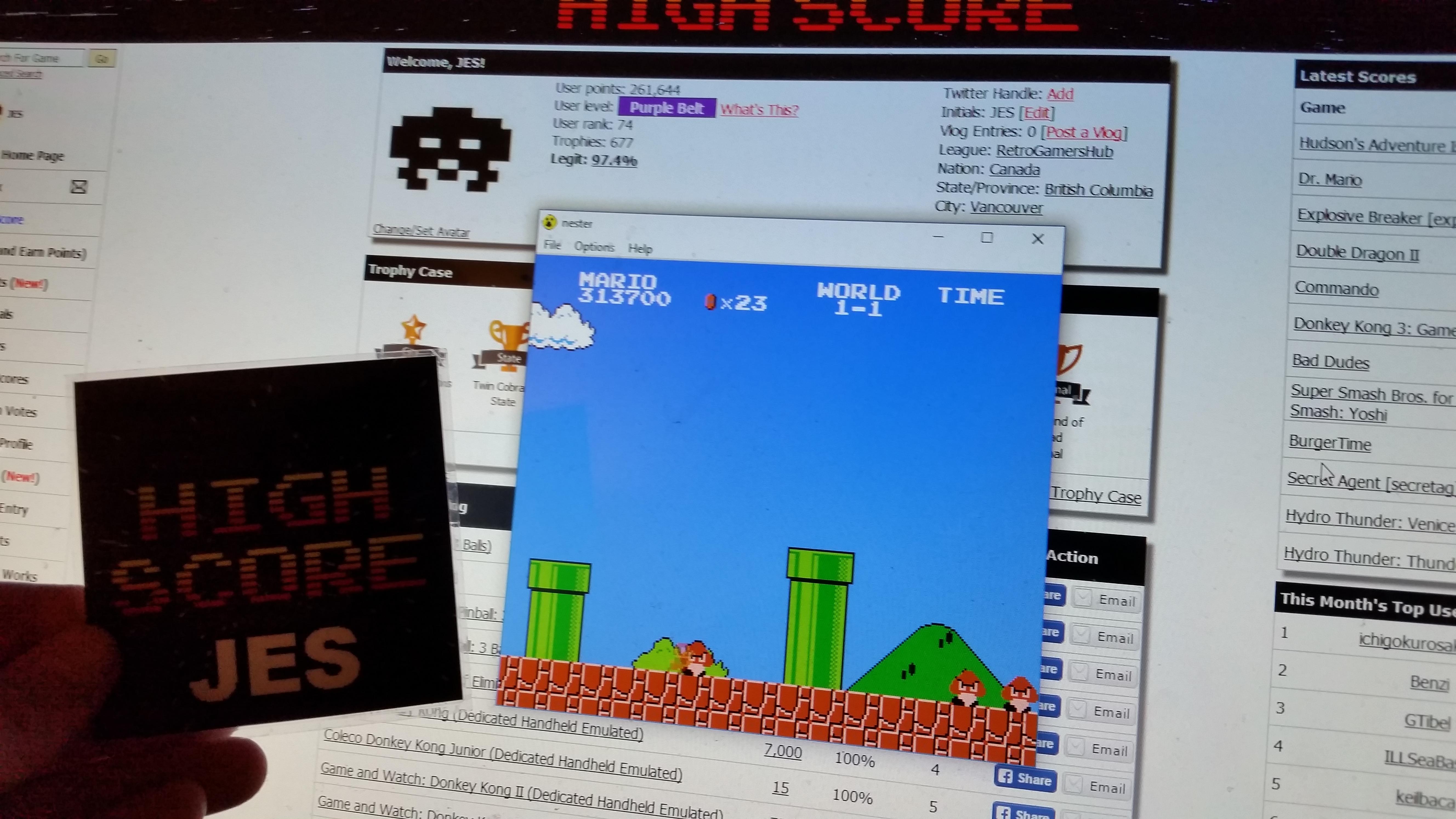Super Mario Bros. 313,700 points