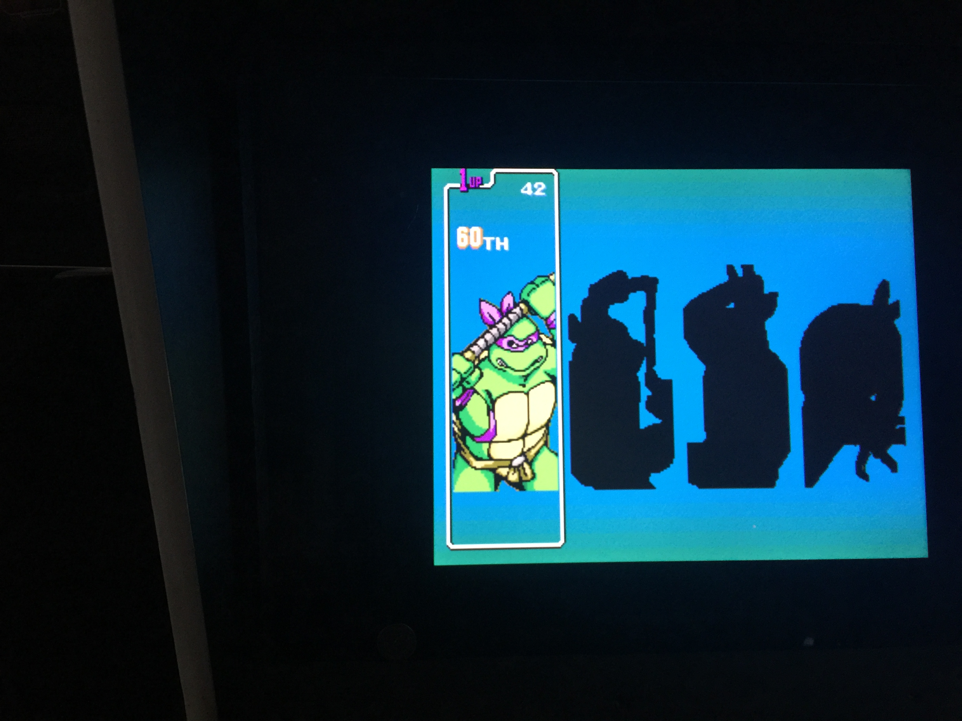 Teenage Mutant Hero Turtles 42 points